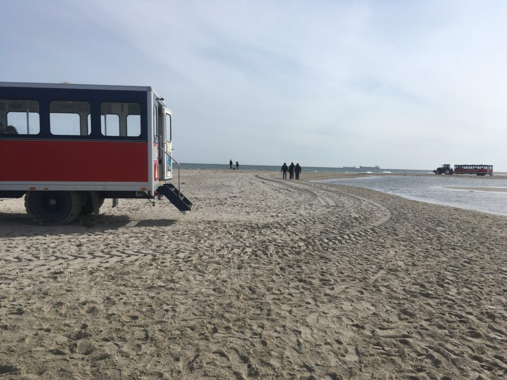 Skagen, Denmark: Best Things to Do