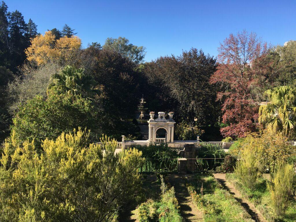 Coimbra Botanical Gardens